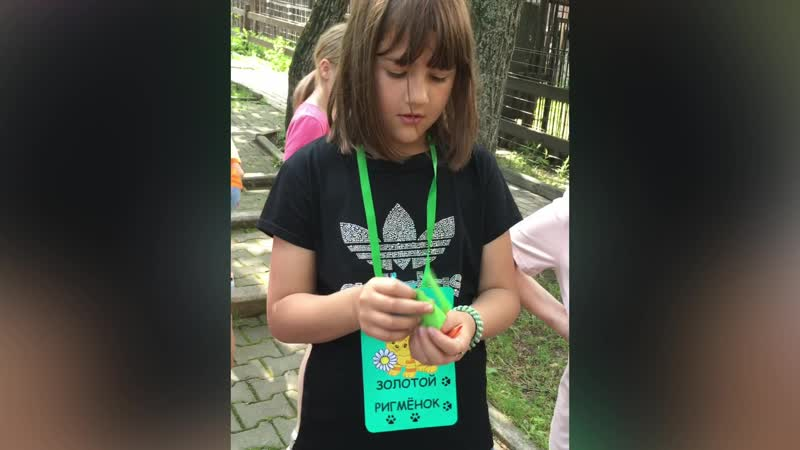 Гармония с природой и с собой дает на жизнь позитивный настрой! видео о занятии по природотерапии с ребятами детдома № 6