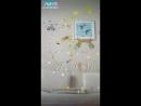 Like_6599513926560589445-1.mp4