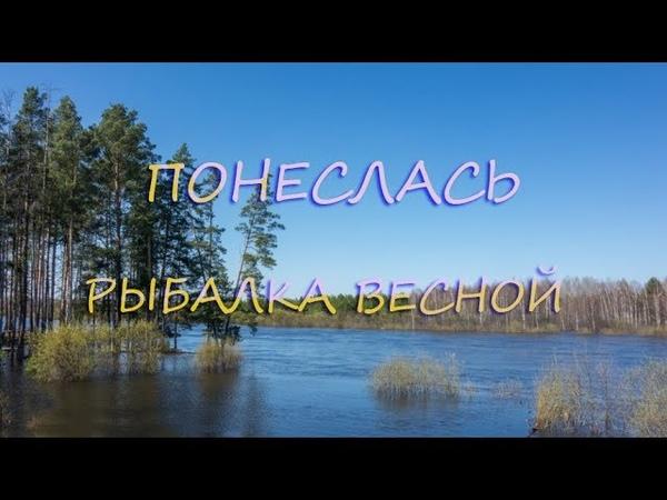 Весенняя рыбалка Открытие сезона Рыбалка на донку в заливе реки Волга