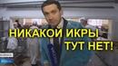 Икры нет! Программа Киселева отмазывает колонию, где жирует Цеповяз