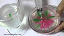 Jelly Art In Glass