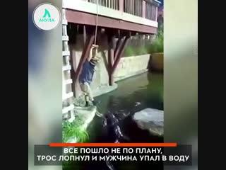 Упал в озеро с крокодилами | АКУЛА