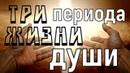 Три периода жизни души Из писаний святых отцов