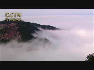 В горах Лушань в Китае можно стать свидетелем невероятно красивого явления — моря из облаков.