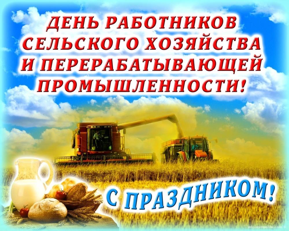 Открытка с поздравлением с днем сельского хозяйства, день рождения для