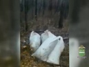98 кг наркотиков изъяли амурские полицейские