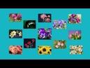 Развивающий мультфильм для детей 1-3 года. Первые слова. Учим цветы. For kids (0+)