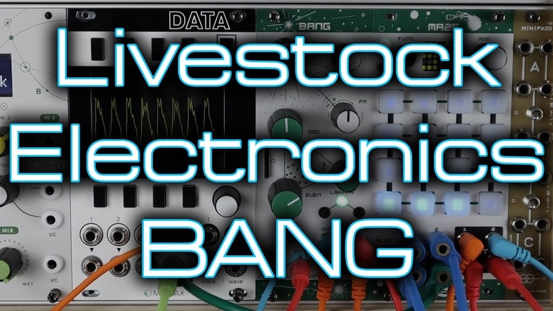 Livestock Electronics BANG Lo fi glitchy game inspired wavetable action