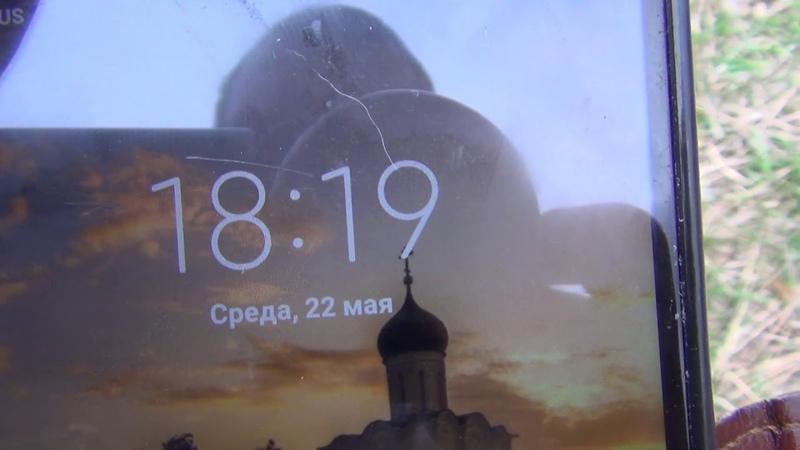 СИБИРСКИЙ ПОДСНЕЖНИК ПРОСТРЕЛ ЖЕЛТЕЮЩИЙ Подснежник сон трава желтеющий на 22 мая 2019