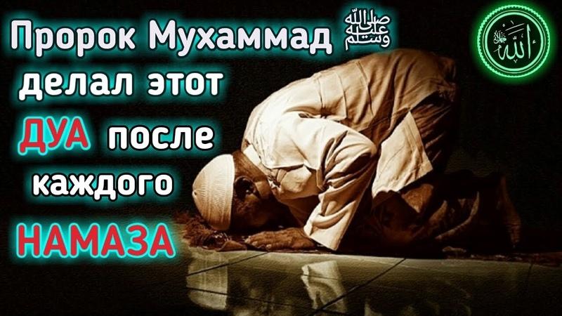 ДУА Пророка Мухаммада (ﷺ) .Лайлатуль Кадр