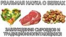 🥙 Животный и растительный белок мифы и заблуждения сыроедов и традиционно питающихся