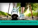Скандинавская ходьба что будет с Вашим телом если каждый день ходить по 5 км и более