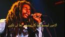 Bob Marley Natural Mystic مترجمة للعربية HD 2016