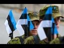 Вот это стратег : в Эстонии предложили Петербург выбрать целью для ракет