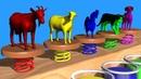 Animales de la Granja h sonidos de animales para niños /Animales de la granja para niños / ESPAÑOL