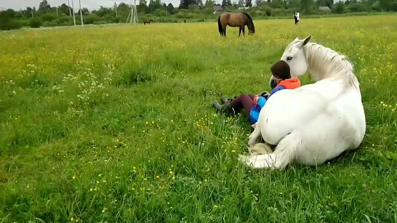 В гармонии с лошадью