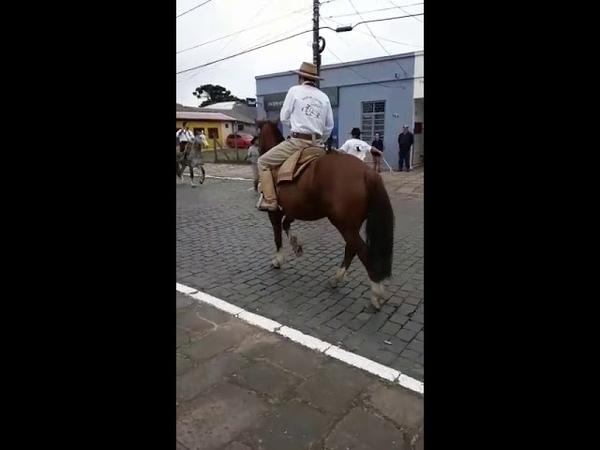 A importância de instalar freios ABS no seu cavalo