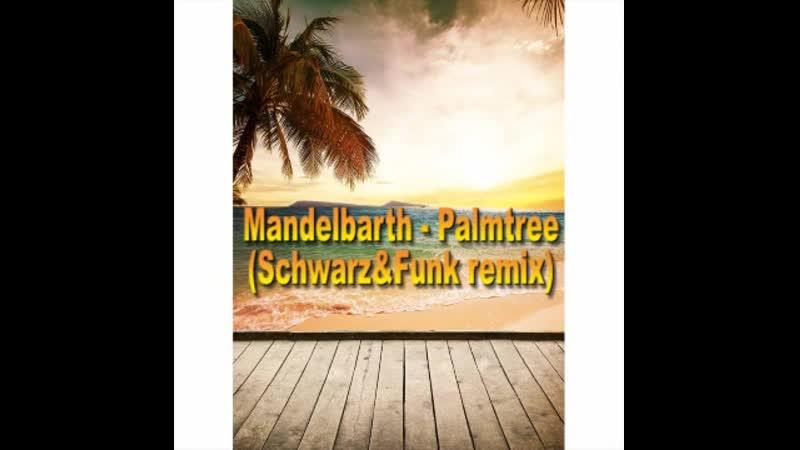 Mandelbarth - Palmtree (Schwarz _ Funk Remix)
