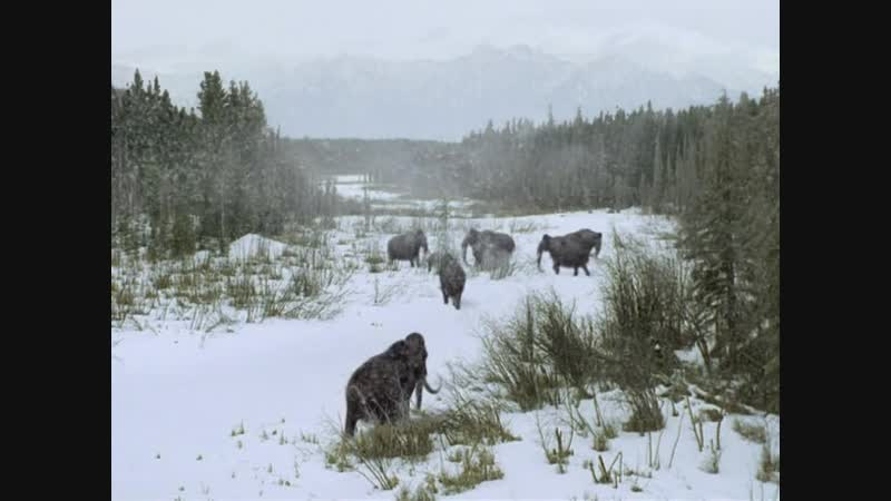 BBC: Прогулки с чудовищами (2001) — 6 Серия: Путешествие мамонта