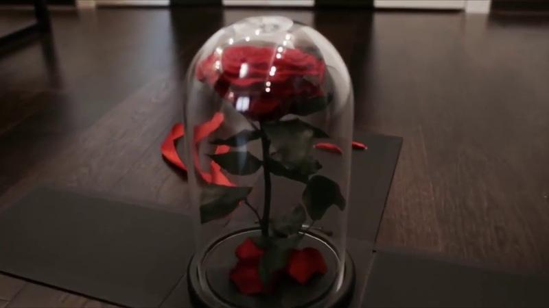 Розы в колбе Французские Вечные от 20 40 до 70 см