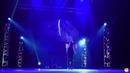 Софья Сэй – Ведьмак 3 дикая охота - Шиповник и сирень (Конкурс караоке) - Aki no Yume 2018