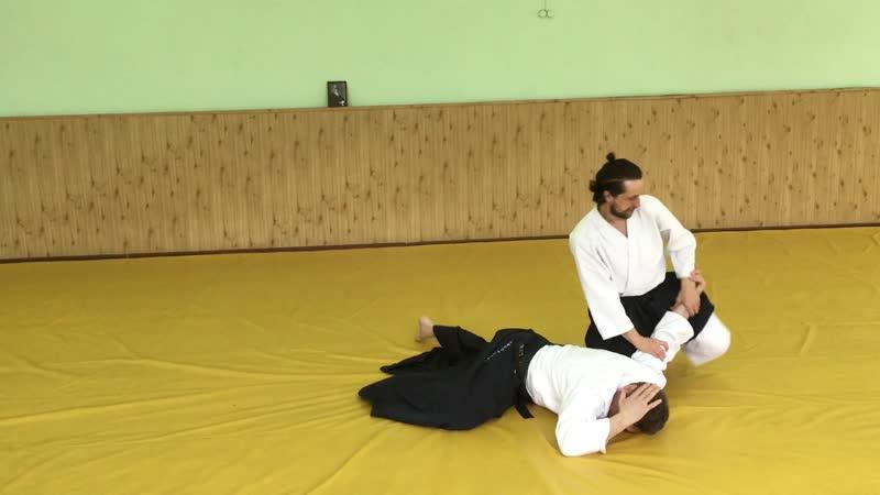 3 01 апреля 2018г., семинар Бастракова В.В. | Айкидо | 合気道 | Aikido
