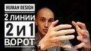 Дизайн Человека 2 и 1 ворота 2 линии Даниил Трофимов Human Design
