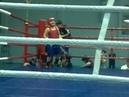 Гаджи бокс