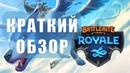 Краткий обзор Battlerite Royale beta