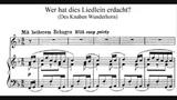 Gustav Mahler - Des Knaben Wunderhorn
