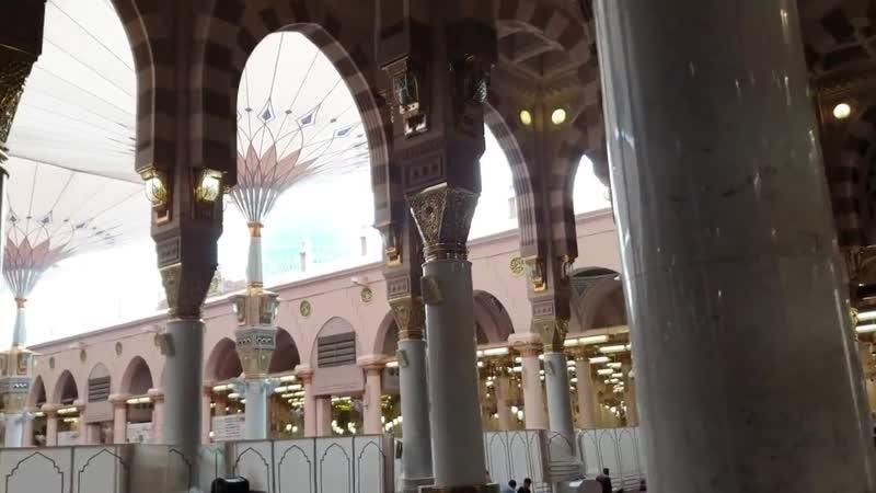 في ربوع المسجد النبوي الشريف
