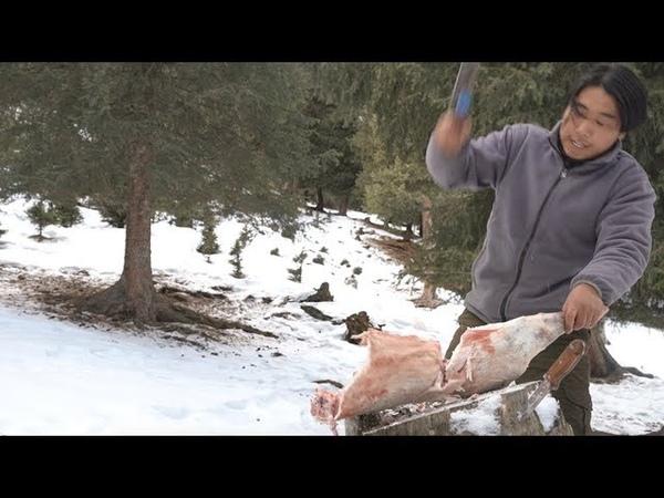 【野食小哥】之一個人,半隻羊,在零下30度的雪山上煮了一大盆羊肉蝎2337