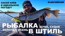 Рыбалка в Штиль Джиг спиннинг Приманки для Осенней Щуки и Судака Октябрь 2018