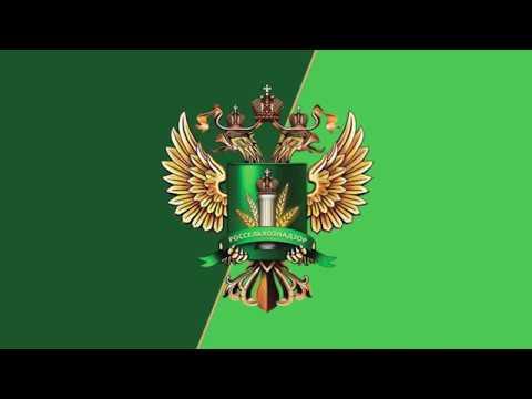 В Брянске состоялся семинар по вопросам экспорта зерна и продуктов его переработки