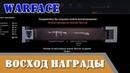 Награды Восход профи Warface