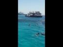 Хургада , Египет , красное море , райский остров