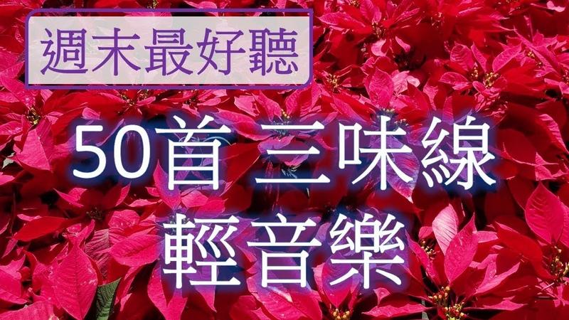 週末最好聽 50首三味線輕音樂 放鬆解壓 Relaxing Chinese Music