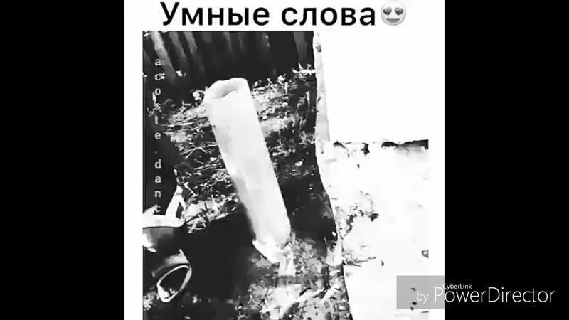 Умные_слова_HD 720p.mp4