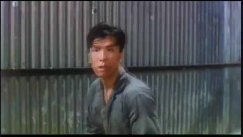 Donnie Yen vs Robin Shou