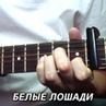 """Kaminari Guitar on Instagram: """"@mikanewton Белые лошади. Музыка из сериала Кадетство. Кавер на гитаре. Табы по ссылке в профиле. А вы играете на ..."""