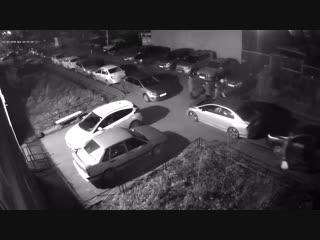 Хулиганы разгромили машины на Парина