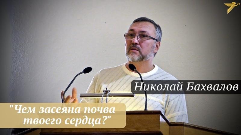 Николай Бахвалов - Чем засеяна почва твоего сердца?