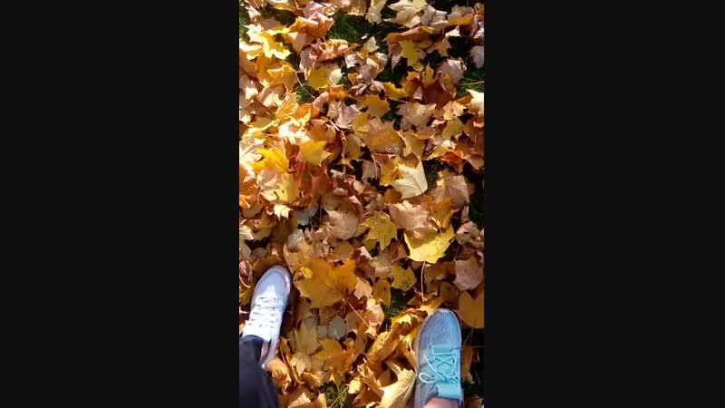{ golden Autumn Spb 18 }