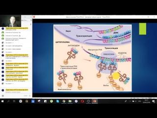 Бесплатный вебинар 2. Биосинтез белка.