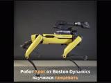 Робот Spot от Boston Dynamics танцует лучше многих люди