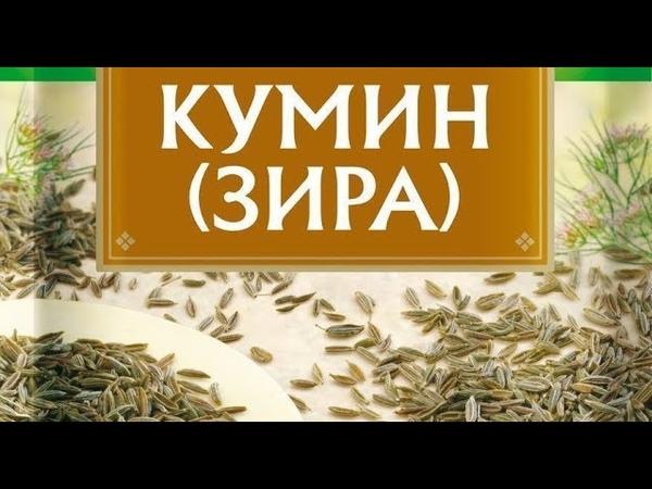 Зира (КУМИН) очень популярна в ИСПАНИИ / мастер-класс от шеф-повара / Илья Лазерсон / Мировой повар