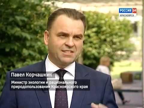 Вести.Интервью: министр экологии и рационального природопользования края Павел Корчашкин