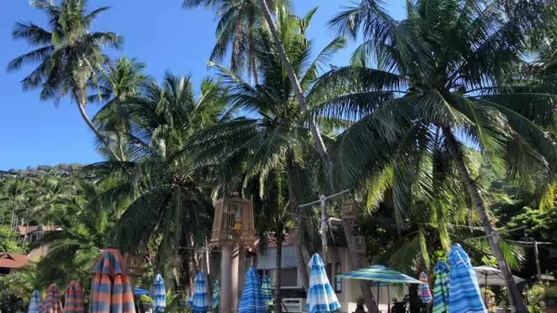 USC октябрь Ижевск в Таиланде =