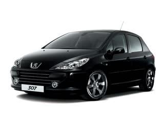 Peugeot 307, Не заводится. ВИНОВНИК