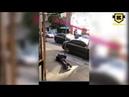 Khabib Nurmagomedov laughs as homeless man do push-ups for money